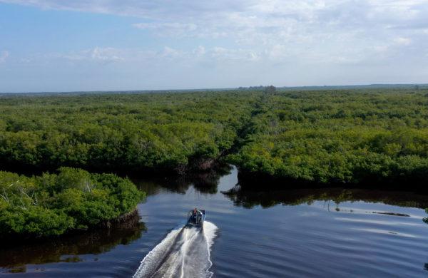 Everglades City Airboat Tours cruising through the Everglades