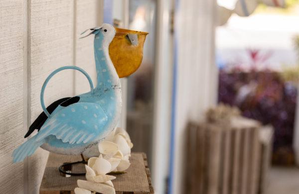 Pelican art in gift shop